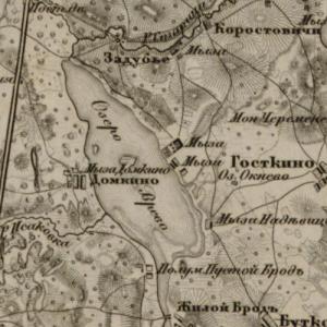 Топографическая карта Санкт-Петербургской губернии